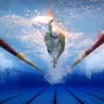 natation-sports