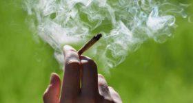 Comment arrêter le cannabis avec le CBD ?